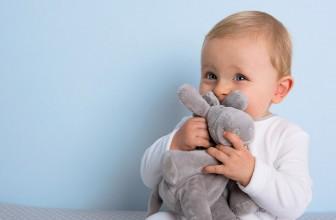 Comment choisir le doudou de bébé?